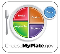 Plate and fork says; Choose MyPlate.gov